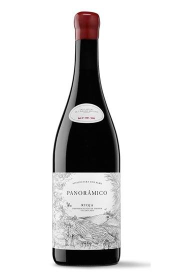 Panorámico tinto rioja vino