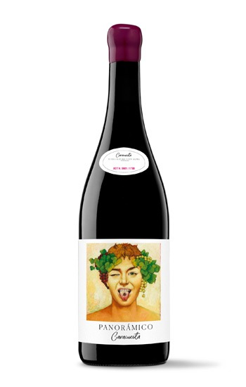 Panorámico Caracuesta vino
