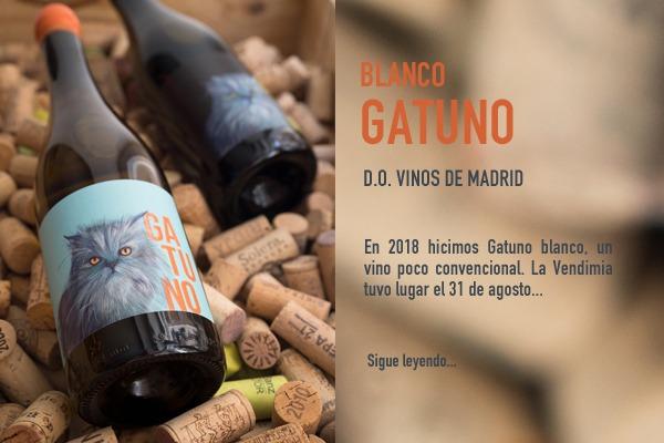 vino gatuno blanco elaborado por Bodegabierta en Madrid