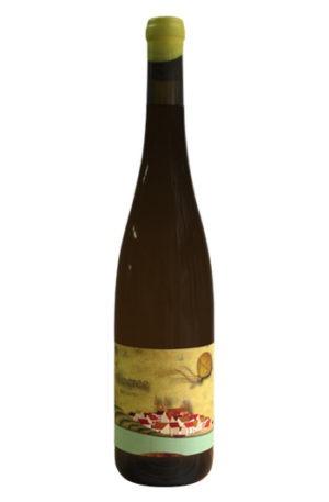 Alicerce senlleiro vino de betanzos branco lexitimo